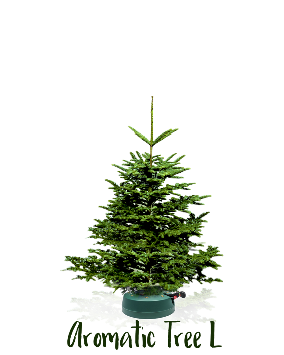 Aromatic Tree L