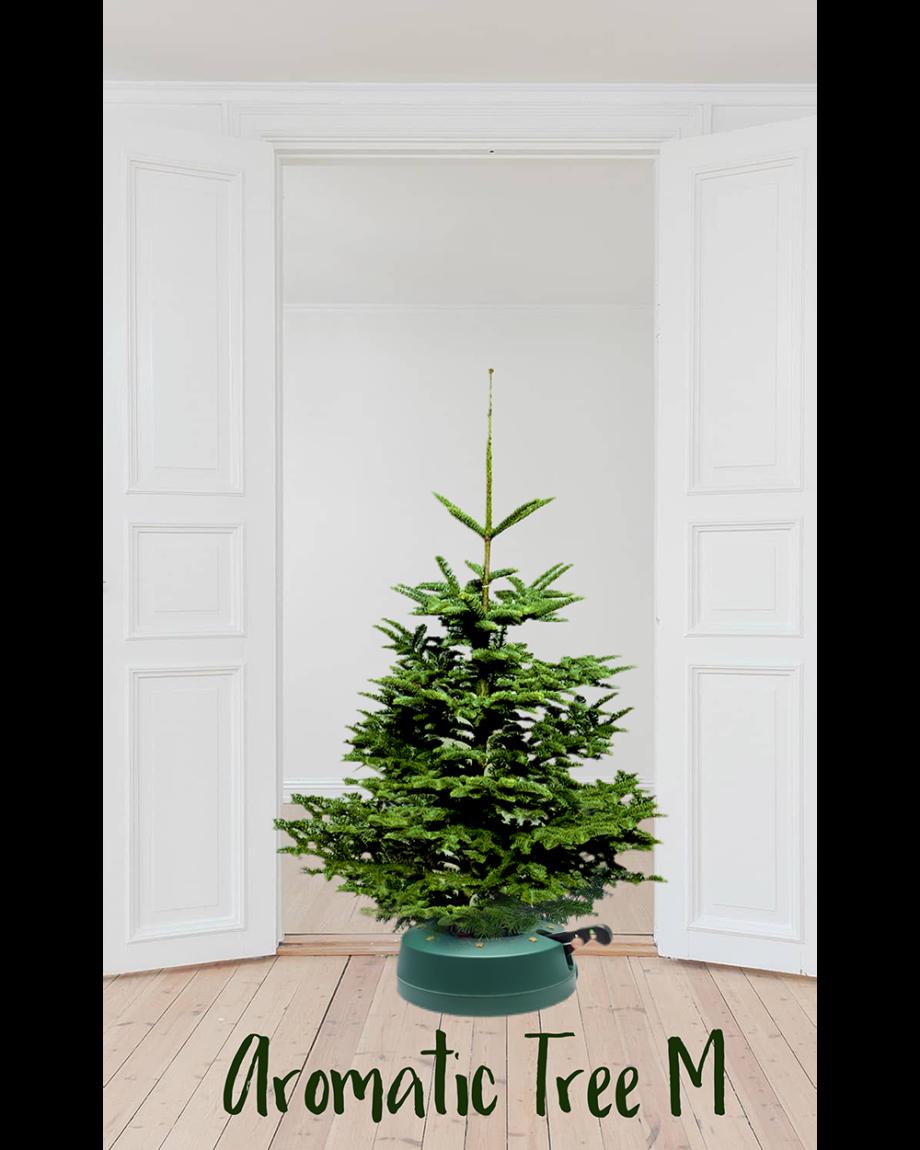 Aromatic Tree M Home