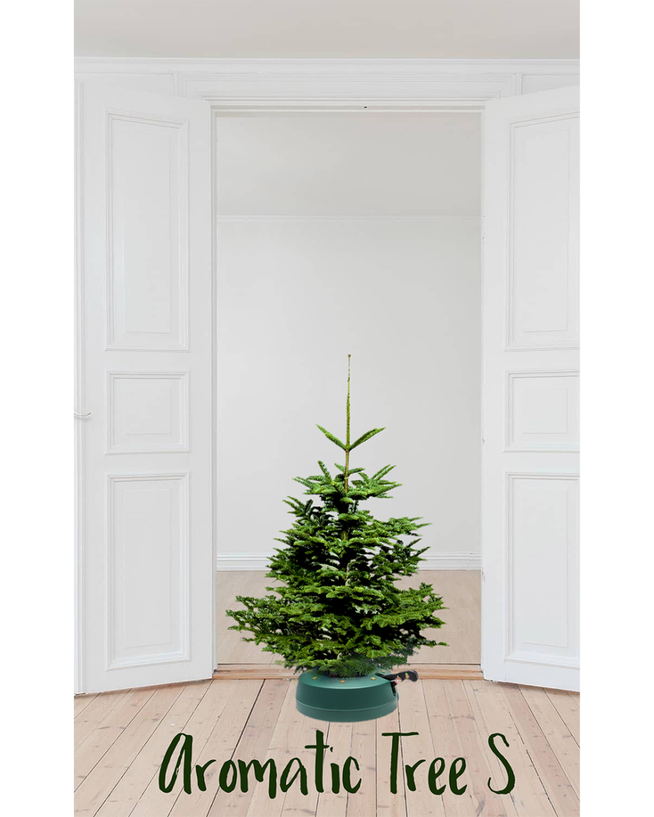 Aromatic Tree S Home