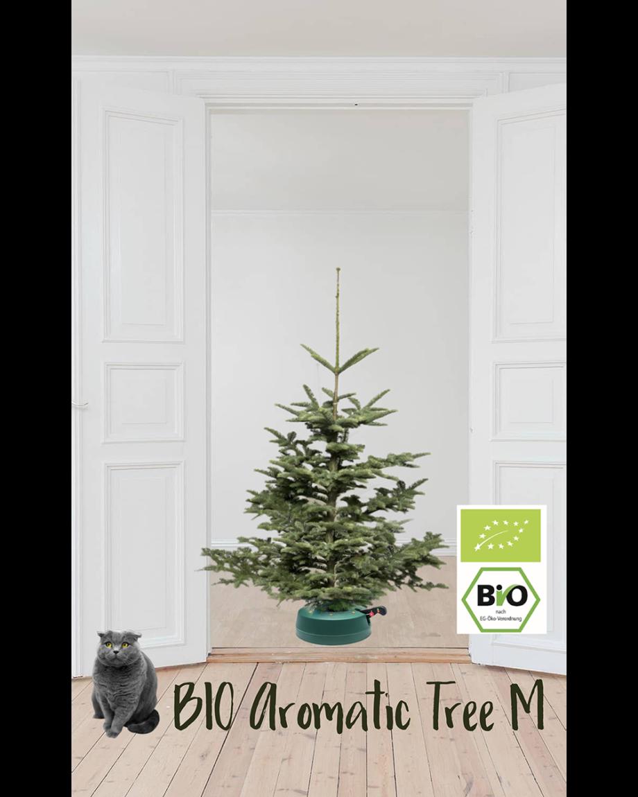Bio Aromatic Tree M Home